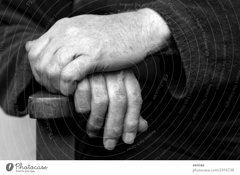 Hands on the back of the chair in black and white hands Chair Backrest Masculine Male senior Man Adults Senior citizen Life Fingers Fingernail 1 Human being