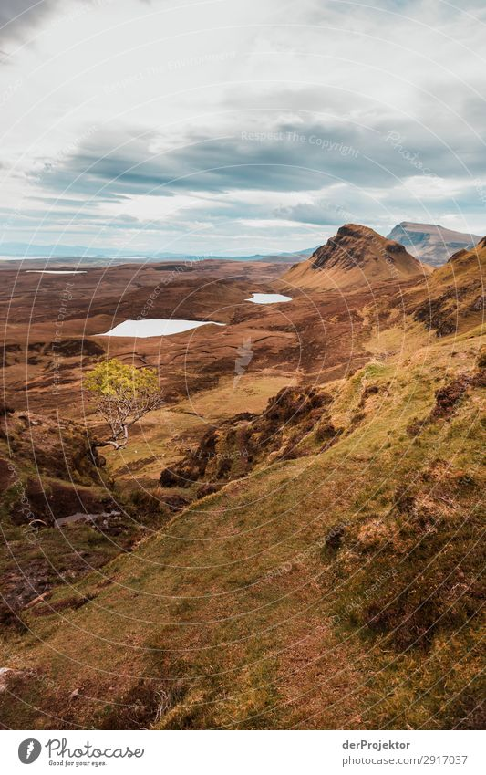 Hike over the Isle of Skye XIII Panorama (View) Lake coast Lakeside Landscape Rock Bay Beautiful weather Summer Animal Plant Waves Environmental protection
