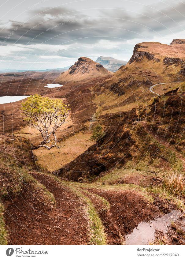 Hike across the Isle of Skye XI Panorama (View) Lake coast Lakeside Landscape Rock Bay Beautiful weather Summer Animal Plant Waves Environmental protection