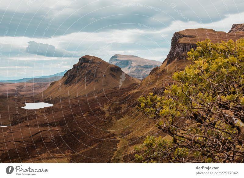 Hike across the Isle of Skye VI Panorama (View) Lake coast Lakeside Landscape Rock Bay Beautiful weather Summer Animal Plant Waves Environmental protection