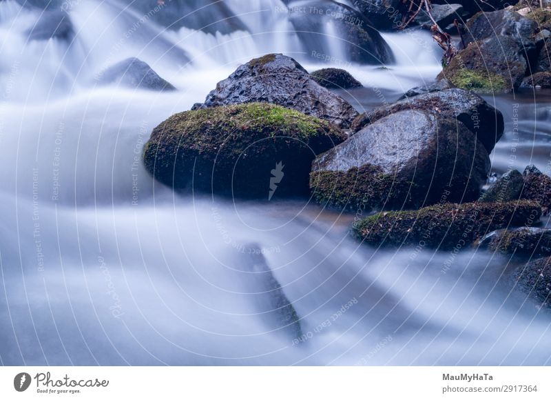 Blurred motion of water Beautiful Life Environment Nature Landscape Tree Leaf Park Forest Rock Brook River Waterfall Stone Movement Fresh Long Wet Natural Blue