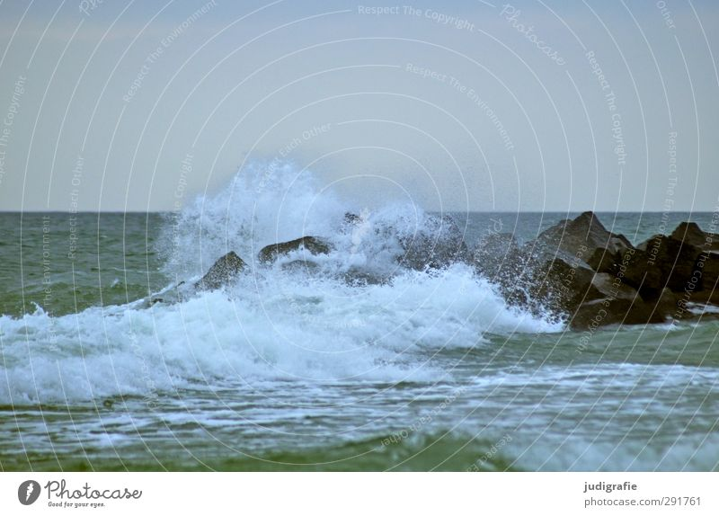 Nature Water Landscape Environment Cold Movement Natural Wind Waves Wild Climate Wet Baltic Sea Fluid White crest Darss