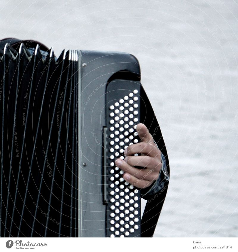 ///|:::<) Hand Fingers 1 Human being Artist Event Music Outdoor festival Musician Accordion Accordion player Musical instrument button accordion Listen to music