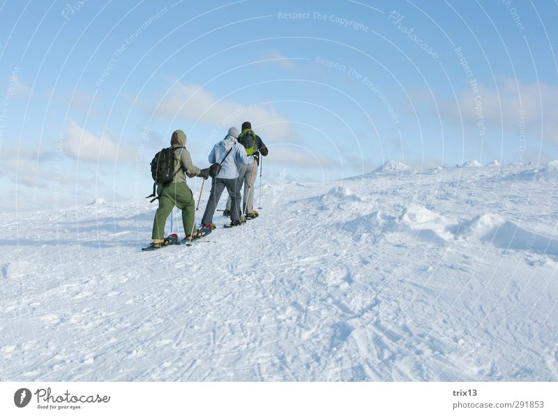 Snowshoeing in the Finnish cold Vacation & Travel Trip Adventure Winter Winter vacation Human being 3 Group Landscape Wind Sports Hiking Together Infinity Blue