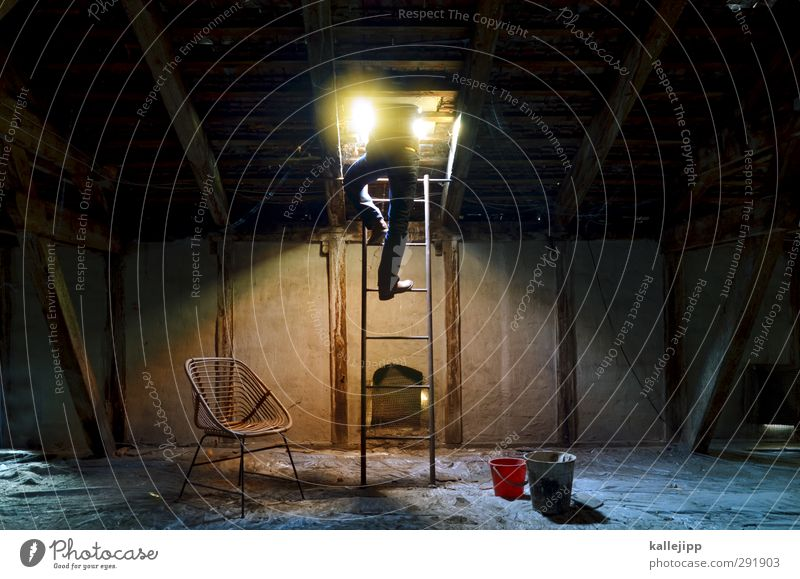 career ladder Human being Masculine Man Adults Body 1 House (Residential Structure) Window Old Hatch Ladder Resign Futurism Feces Attic Old building Undo Direct