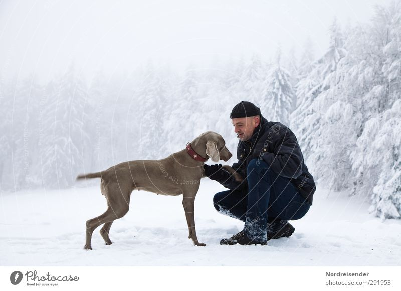 Dog Human being Man Animal Winter Forest Adults Snow Life Playing Friendship Together Ice Weather Climate Hiking