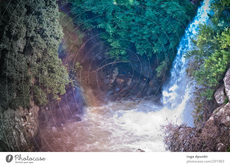 rainbow Environment Nature Landscape Plant Beautiful weather Tree Rock Mountain Canyon Brook Waterfall Israel Near and Middle East Emotions Moody Contentment