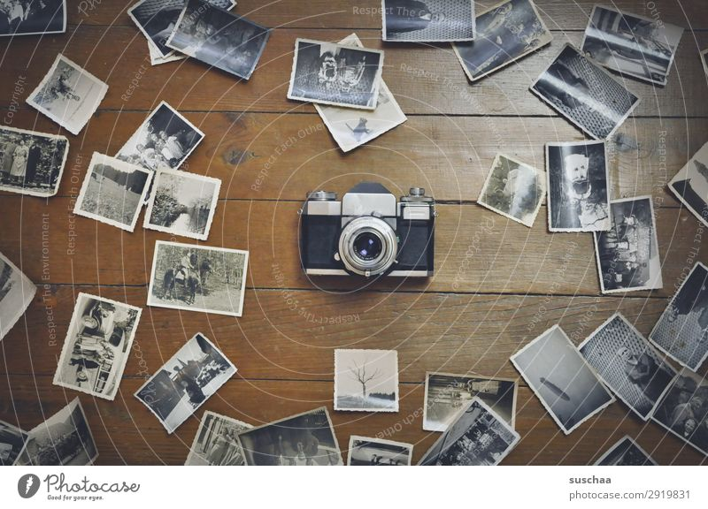 old photos Photography Negative Old Black & white photo Take a photo Analog Memory Nostalgia Grief family album Past Transience Infancy Childhood memory Legacy