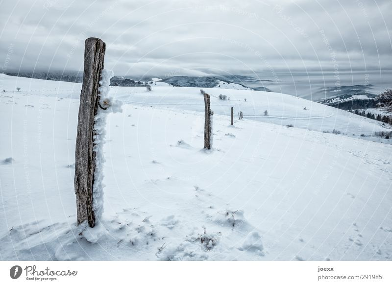 boundary post Nature Landscape Clouds Horizon Winter Weather Wind Ice Frost Snow Mountain Cold Blue Black White Idyll Schauinsland Colour photo Subdued colour