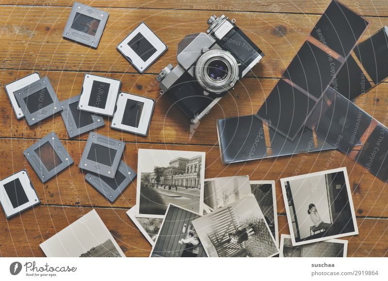 take pictures Photography Slide Negative Camera Black & white photo Take a photo Old Analog Memory Nostalgia Grief family album Past Transience Infancy
