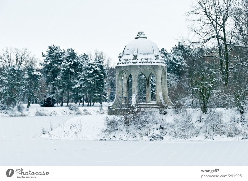 Winter in Stadtpark I Trip Ice Frost Snow Tree Park Lake Adolf Midday Lake Magdeburg Germany Saxony-Anhalt Europe Town Capital city Downtown Deserted