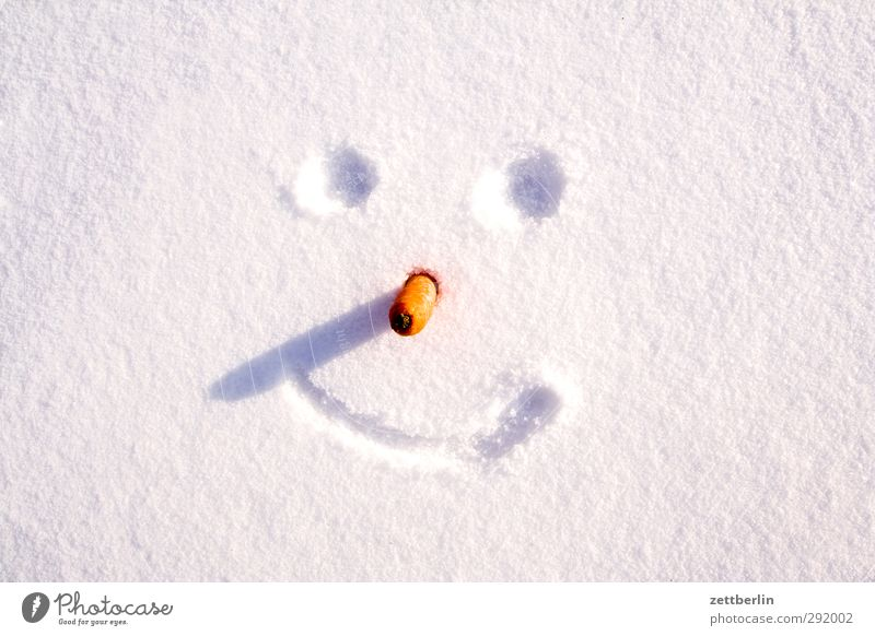 winter Winter Environment Nature Climate Climate change Weather Beautiful weather Ice Frost Snow Smiling Laughter Cold Joy Happiness Joie de vivre (Vitality)