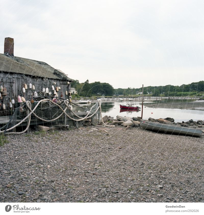 New England. Environment Nature Landscape Earth Summer Coast Fjord River Village Fishing village Small Town Outskirts Deserted Hut Old Dirty Authentic Cold