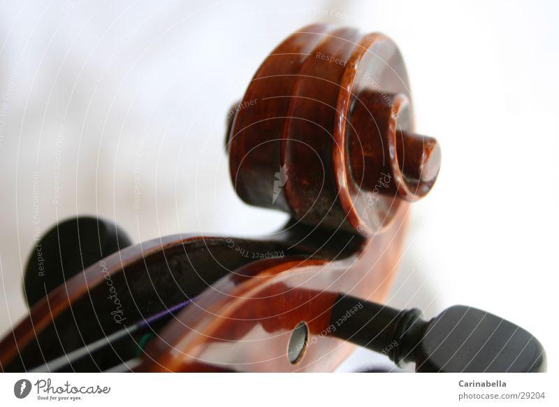 Violin III Wood Musical instrument string Brown Resonator Things Snail