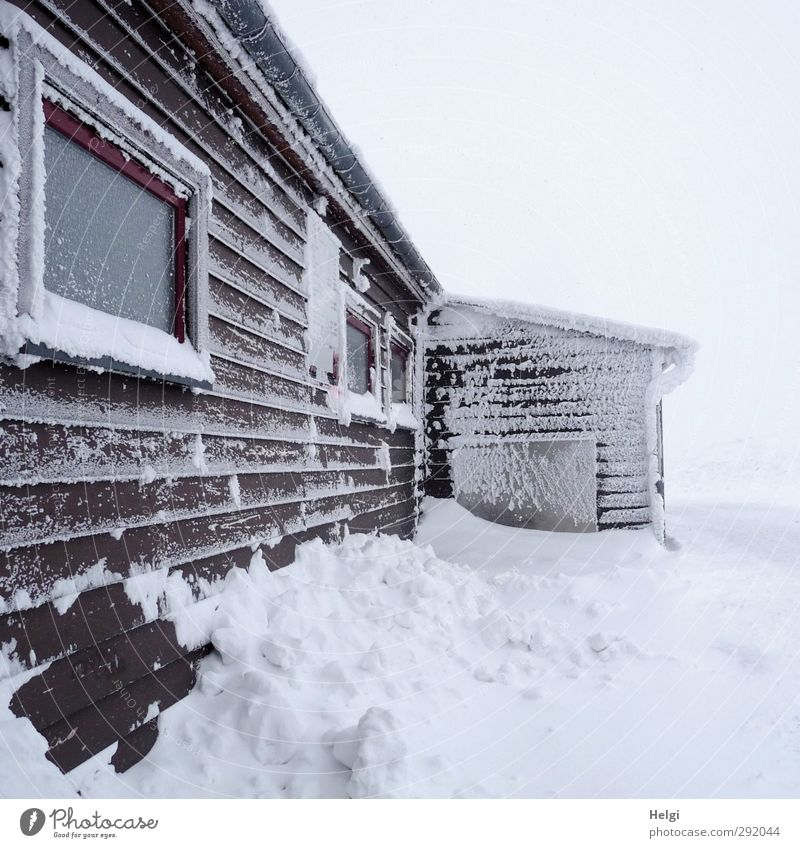 Nature White Winter Calm Landscape House (Residential Structure) Environment Window Mountain Cold Wall (building) Snow Wall (barrier) Building Brown Ice