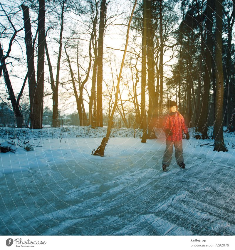 Human being Child Nature Girl Winter Landscape Forest Environment Life Feminine Playing Lake Ice Body Infancy Climate