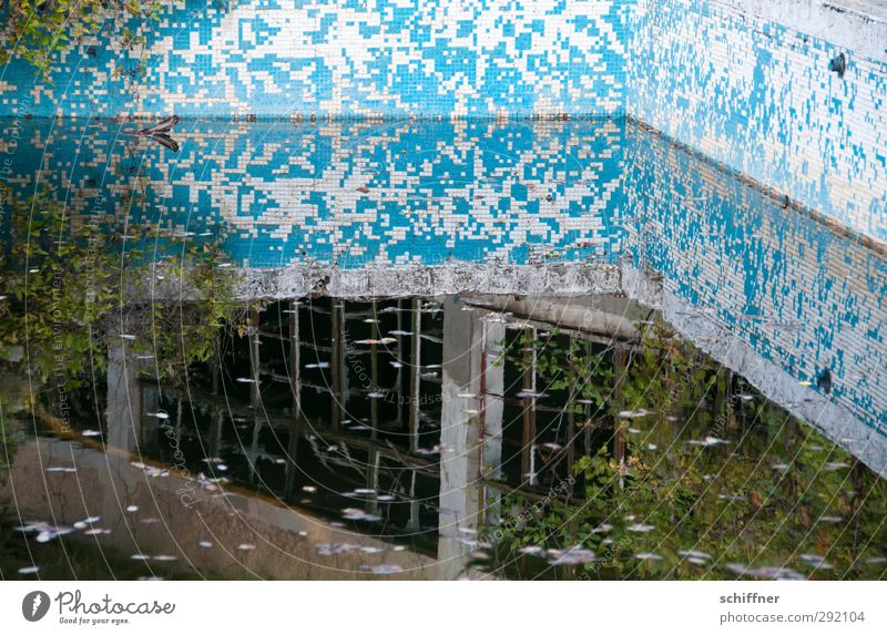 Tetris mirror Ruin Old Uninhabited Swimming pool Water Surface of water Reflection Derelict Loneliness Historic Mosaic Tile Putrefy Bushes Manmade structures