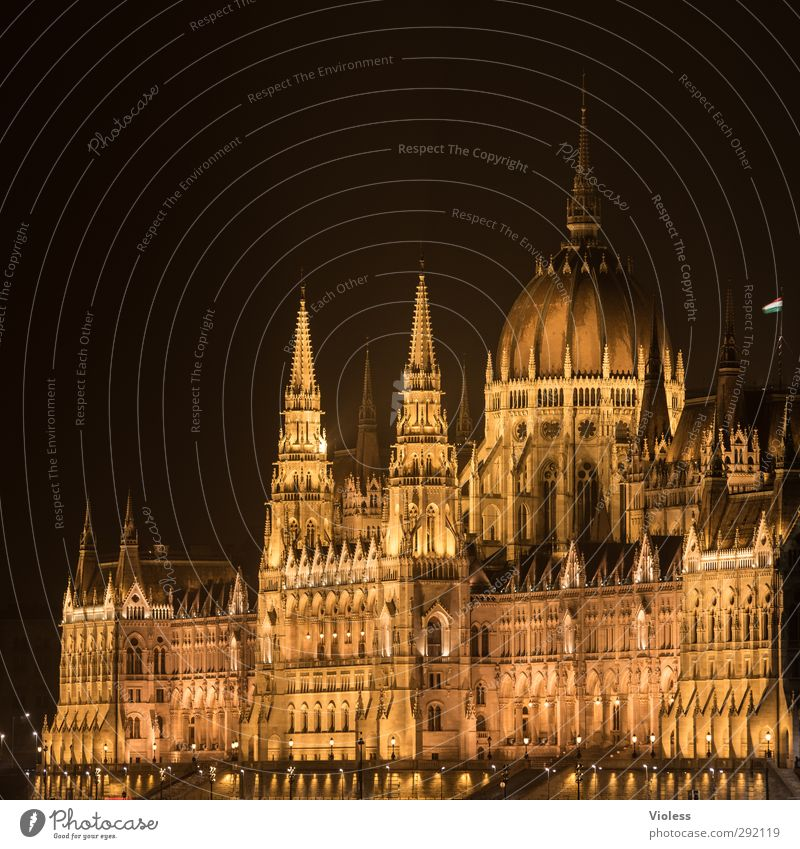 not all the gold that..... Port City Parliament Landmark Famousness Gold Might neo-Gothic Budapest Colour photo Night Long exposure