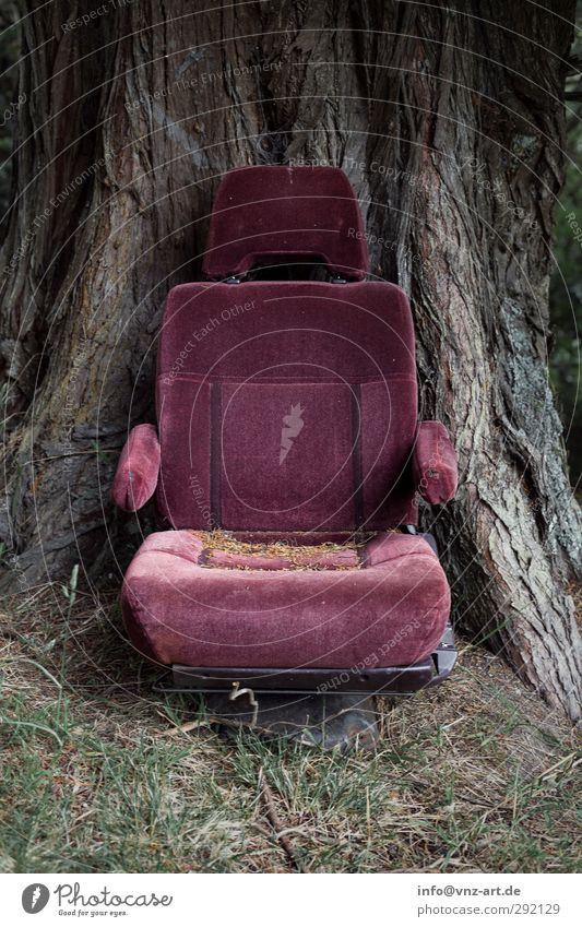 chair Redecorate Moving (to change residence) Furniture Armchair Chair Environment Nature Earth Tree Old Gray Violet Fear of flying Fiasco Movie theater seat