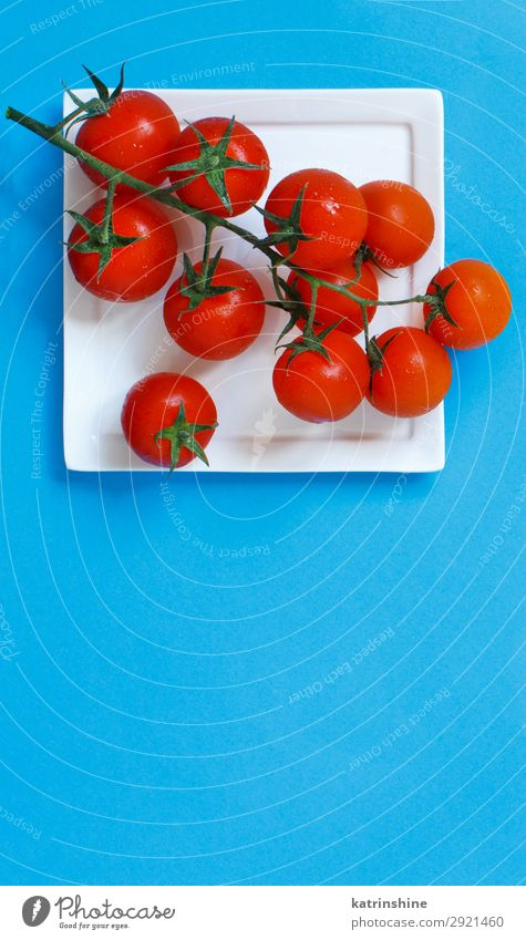 Cherry tomatoes on a blue background Blue Red Copy Space Above Bright Fresh Vegetable Vegetarian diet Diet Vegan diet Conceptual design Ingredients Minimalistic
