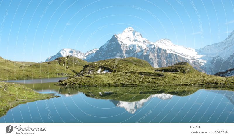 Swiss idyll Trip Summer Mountain Nature Landscape Water Sky Autumn Alps Blue Green Bach alps lake Grindelwald Reflection Snowcapped peak Colour photo