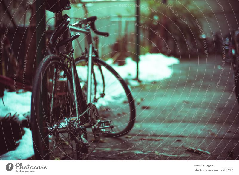 City Loneliness Relaxation Environment Sports Movement Style Bicycle Leisure and hobbies Lifestyle Fitness Cycling Asphalt Sports Training Chain Sustainability