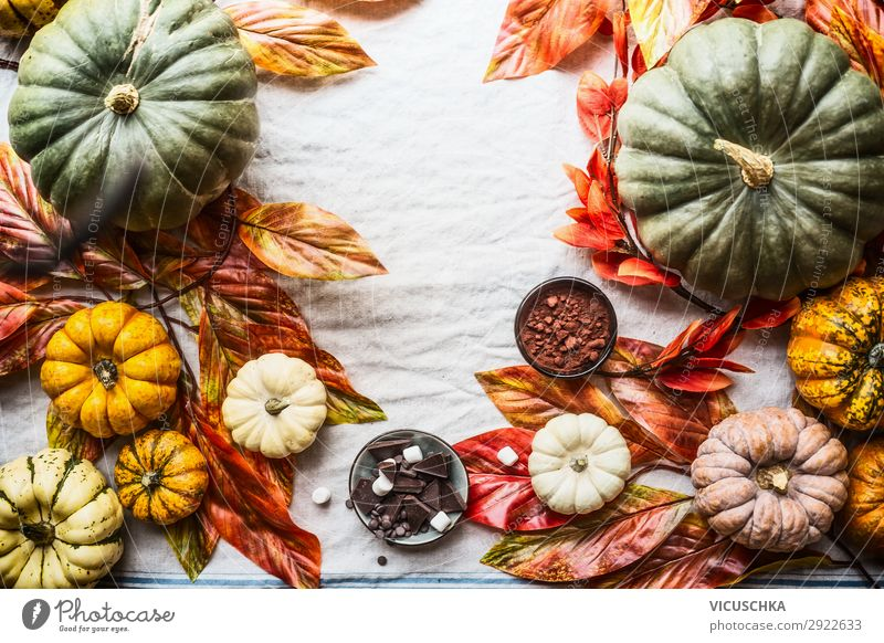 Autumn background with pumpkins, chocolate, nuts Food Chocolate Style Design Joy Thanksgiving Hallowe'en Nature Still Life Background picture Pumpkin