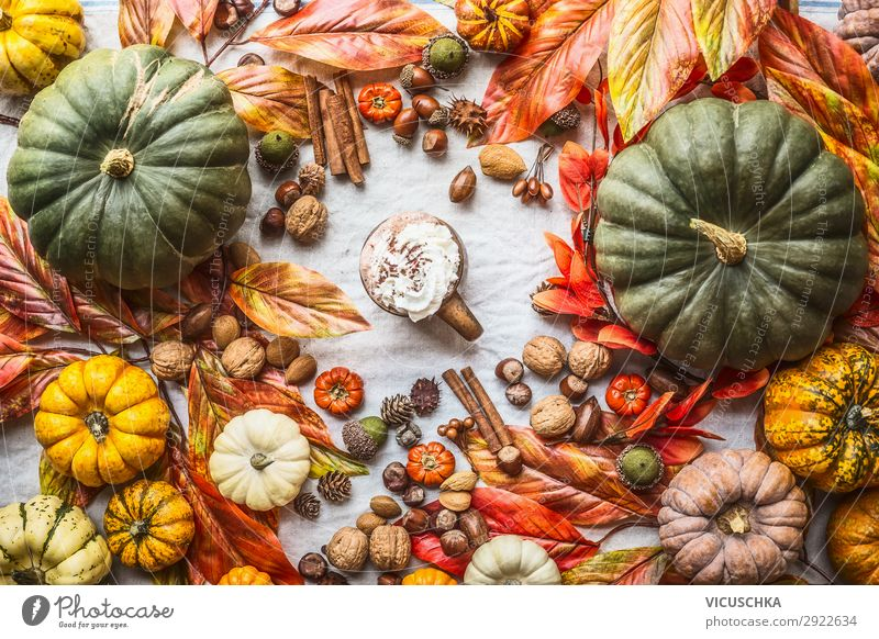 Assortment of colorful farm pumpkins with mug of hot chocolate, nuts , spices and autumn leaves, top view. Autumn still life assortment thanksgiving recipes