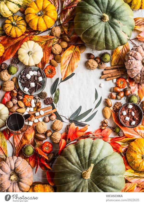 Colourful Pumpkins and Autumn Arrangement Food Chocolate Herbs and spices Style Design Living or residing Table Thanksgiving Hallowe'en Decoration Tradition