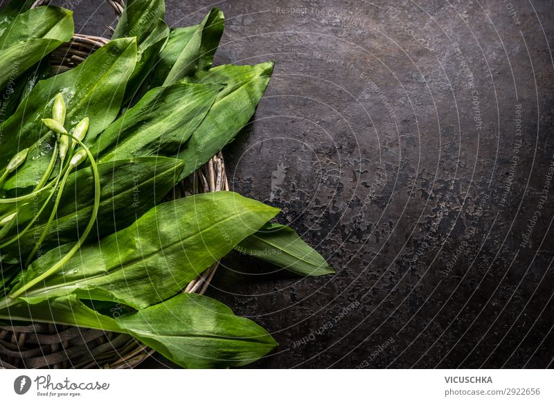 Fresh ramson, wild garlic, leaves on dark rustic background, top view. Copy space for your design, text or recipes. Spring seasonal food fresh copy space spring