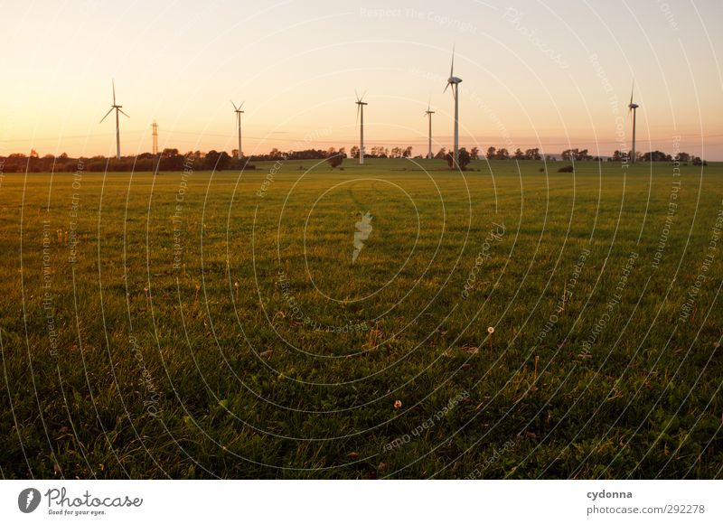 Wind power in the evening light Technology Science & Research Advancement Future Energy industry Renewable energy Wind energy plant Energy crisis Environment