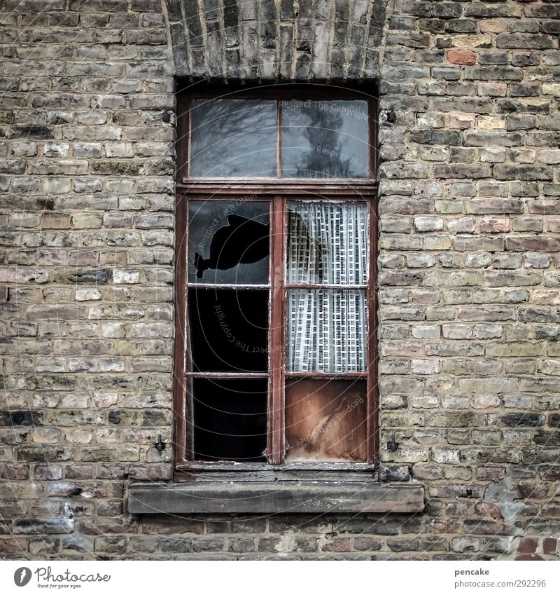 Old houses, draught. Small Town Deserted House (Residential Structure) Wall (barrier) Wall (building) Window Emotions Moody Decline Transience Change Luxury