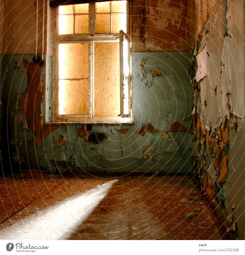 Old houses   room without a view House (Residential Structure) Ruin Building Architecture Wall (barrier) Wall (building) Facade Window Concrete