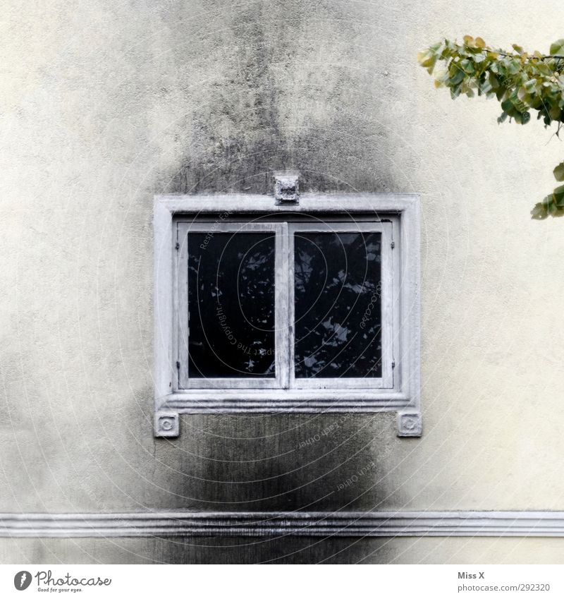 Old houses | Burning down the house Fire Wall (barrier) Wall (building) Facade Window Blaze house fire Soot Colour photo Subdued colour Exterior shot Deserted