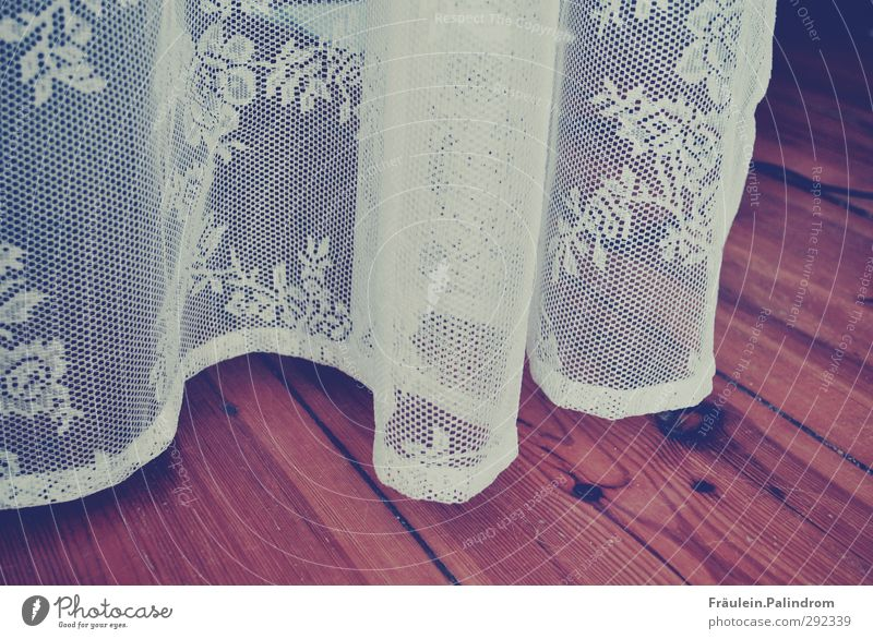 curtain up. Wood Hang Ease Lace Curtain Drape Hallway Parquet floor Floor covering Hover White Transparent Cloth Flower Subdued colour Interior shot Pattern