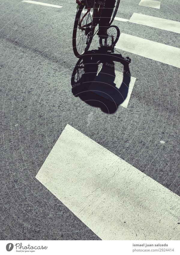 man on the bicycle shadow silhouette in the street Street Sports Leisure and hobbies Metal Transport Bicycle Cycling Ground Asphalt Object photography Wheels