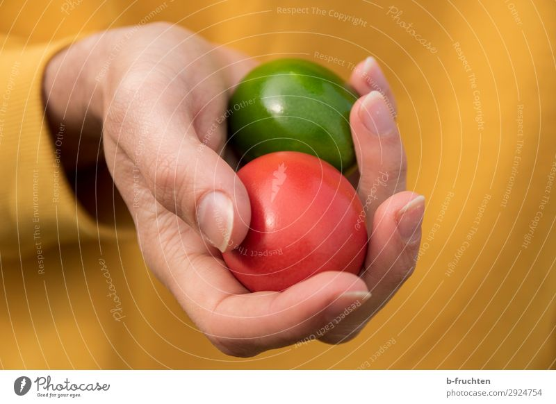 Holding two colorful eggs in your hand Food Nutrition Organic produce Healthy Healthy Eating Man Adults Hand Fingers Select Touch Feasts & Celebrations
