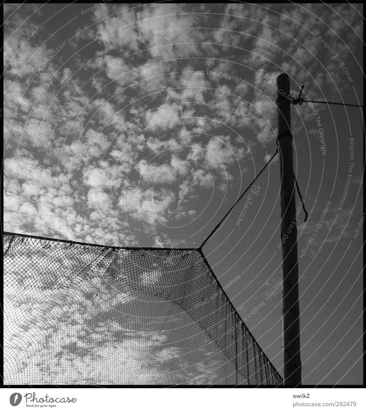 hammock Fishery Sky Clouds Fishing net Wood Hang Firm Dry Pole stake Rope Net Reticular Flexible Fastening Altocumulus floccus Black & white photo Exterior shot