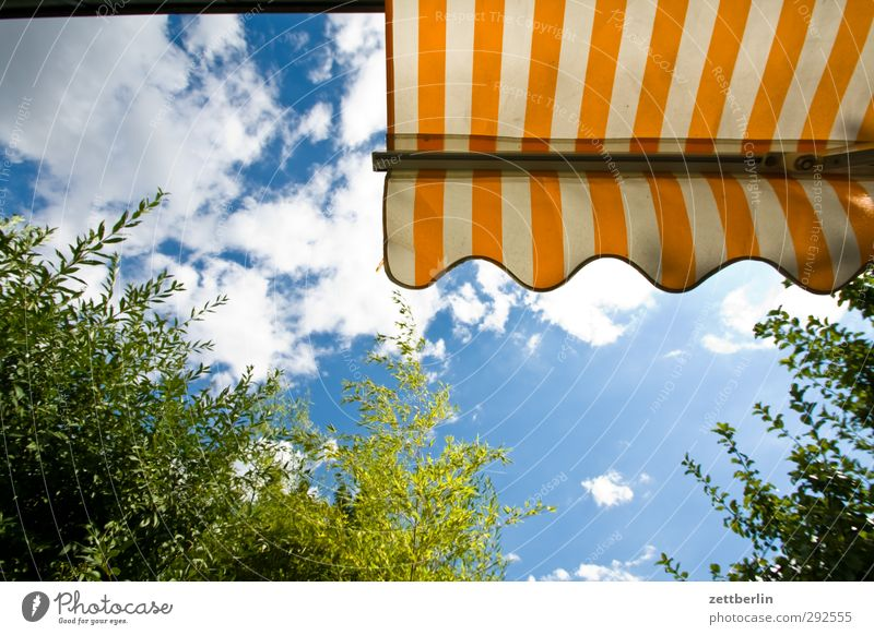 awning Joy Wellness Harmonious Well-being Contentment Leisure and hobbies Vacation & Travel Tourism Trip Freedom Summer Sun Garden Sky Clouds Climate