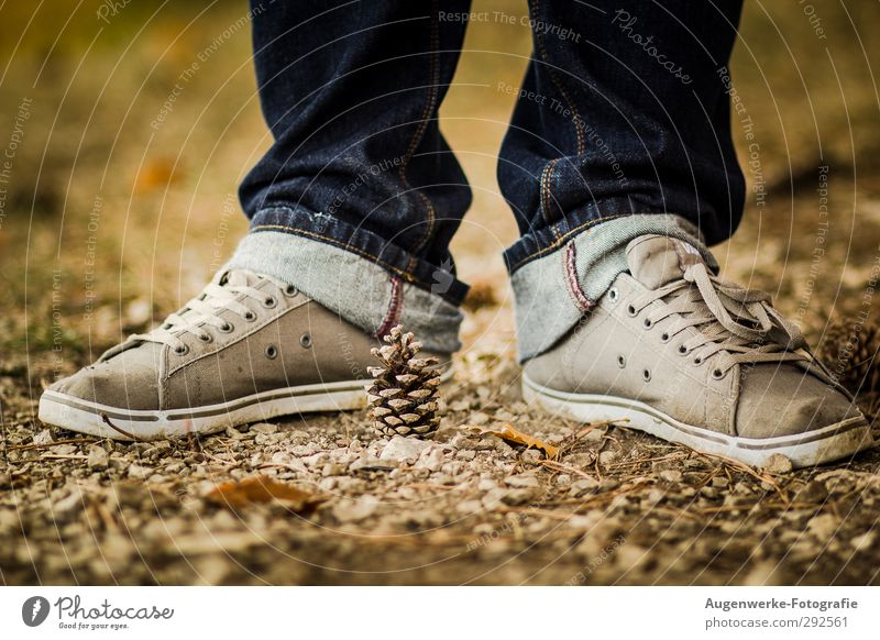 pudge Masculine Adults Feet 1 Human being 18 - 30 years Youth (Young adults) Cone Forest Pants Footwear Sneakers Stand Colour photo Exterior shot Day Contrast