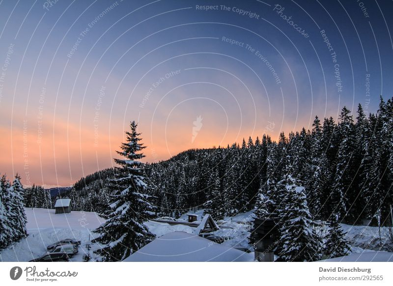 Sky Blue Vacation & Travel White Plant Tree Winter Clouds Landscape Black Forest Far-off places Mountain Snow Ice Orange