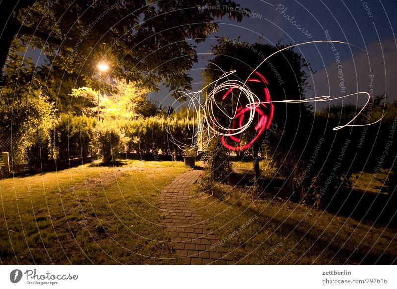The Light Casper is back! Joy Leisure and hobbies Playing Summer Garden Lamp Night life Entertainment Meadow Movement Illumination Circle Pool of light