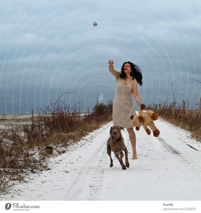 Dog Human being Woman Sky Blue Joy Animal Clouds Winter Landscape Adults Yellow Cold Playing Movement Brown