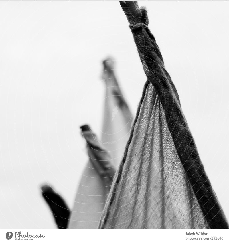 Flags in the wind Design Decoration Wood Contentment Longing Homesickness Black & white photo Exterior shot Detail Abstract Pattern Structures and shapes
