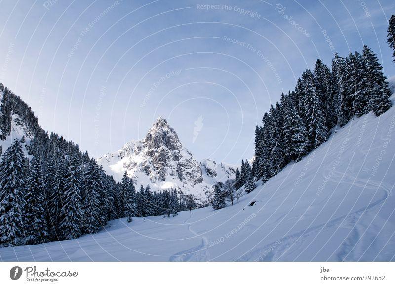 Landscape Calm Winter Forest Mountain Environment Lanes & trails Snow Sports Rock Hiking Trip Beautiful weather Elements Peak Alps