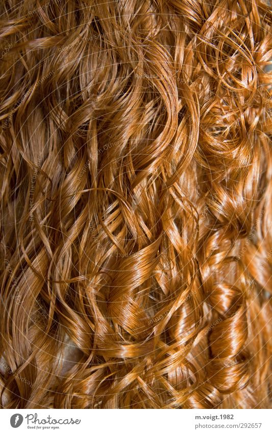 Beautiful Feminine Hair and hairstyles Glittering Wet Clean Curl Long-haired Red-haired