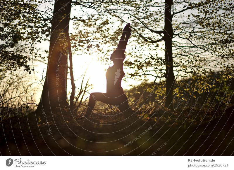 Yoga in the forest Lifestyle Style Joy Happy Healthy Athletic Fitness Harmonious Well-being Contentment Relaxation Calm Meditation Leisure and hobbies Summer