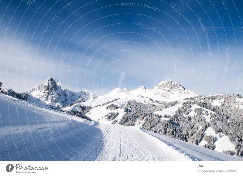 Nature Blue White Relaxation Landscape Calm Winter Forest Mountain Lanes & trails Snow Rock Tourism Authentic To enjoy Trip