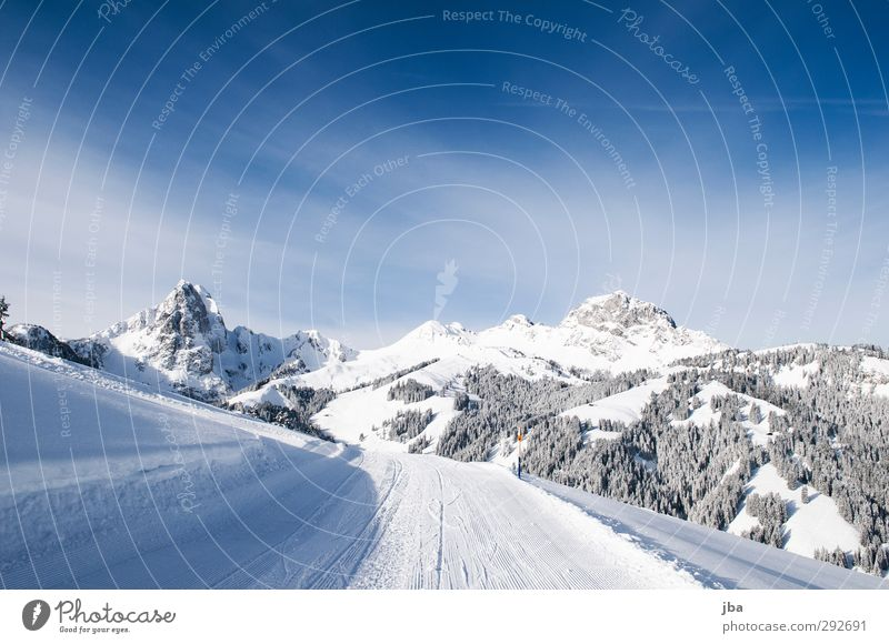 Saanen mountains Calm Tourism Trip Winter Snow Winter vacation Mountain Skiing Sporting Complex Ski run Nature Landscape Elements Beautiful weather Rock Alps