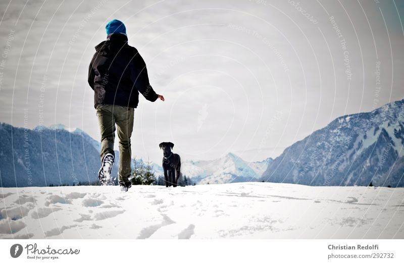 stroll Dog dog owner Exterior shot Snow Snow track Snow mountain Snow cornice Animal training dog training Mountain Landscape Hill mountains snowdog Human being